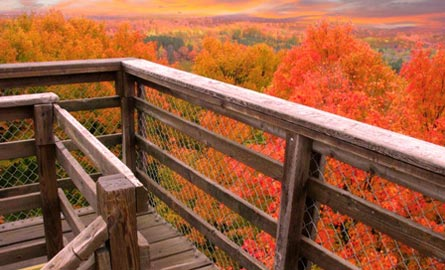 timm-hill-county-park-near-taylor-county-wisconsins-highest-point-tower