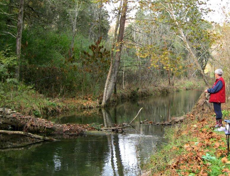 fishing-on-stream-edge