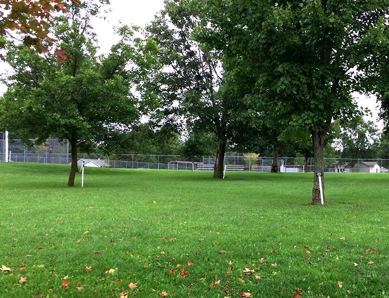 Grahl Park- Medford, WI