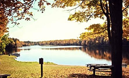 mondeaux-flowage-recreation-area-picnic-area