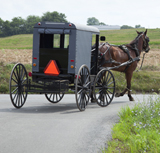 amish-horse-drawn-buggy-driving-road