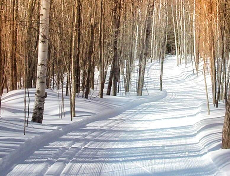 groomed-ski-trail-rib-lake-wi-in-taylor-county